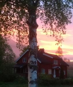 Sonnenuntergang im Umkreis vom Lövheim/Sauland