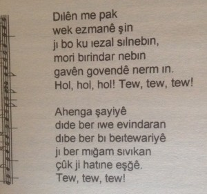 """aus: Nazif Telek """"Die Stärke der Löwin"""", eines von wenigen deutsch-kurdischen Kinderbüchern"""