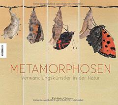 metamorphosen-240